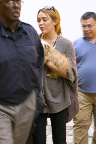 Miley Cyrus ~ 27. September - Arriving at Nashville's Airport