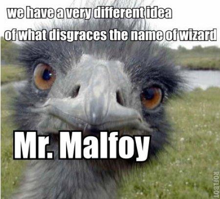 Mr Malfoy
