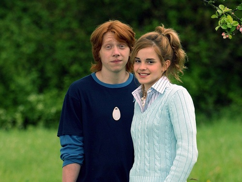 Ron and Hermione দেওয়ালপত্র