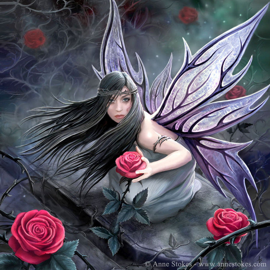 anne stokes images rose fairy hd wallpaper and background. Black Bedroom Furniture Sets. Home Design Ideas