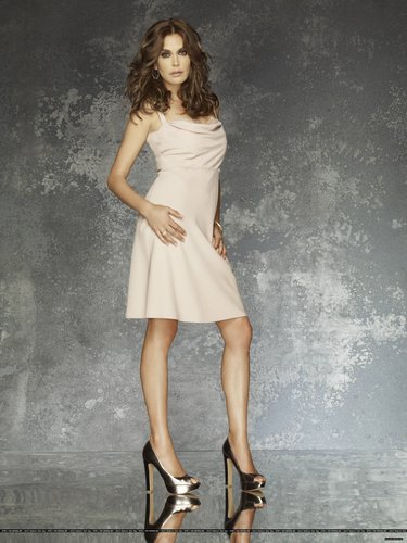 desperate housewives wallpaper probably containing a coquetel dress, a hip boot, and a dress called Season 8 Promo Photoshoot
