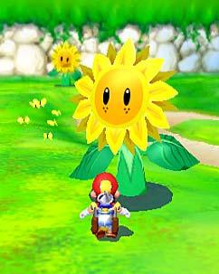 Sunflower Kid