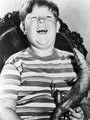 Pugsley - the-addams-family-1964 photo