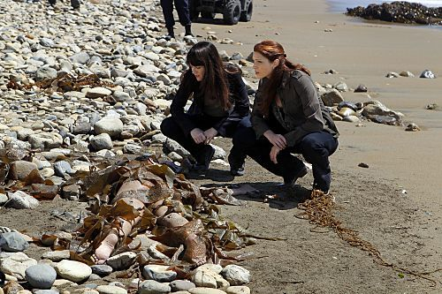 The Mentalist - Episode 4.05 - Blood and Sand - Promotional foto