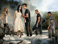 We're in it together! - twilight-series photo