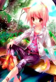 Anime Neko Images Anime Cat Girls Fond D Ecran And Background Photos