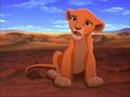 i love this movie's sooooooooooooooooo much - the-lion-king wallpaper