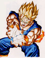 z f8ters - dragon-ball-z photo