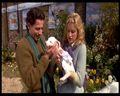 102 Dalmatians - ioan-gruffudd screencap