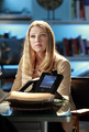 12.03-Bittersweet-Promo - csi photo