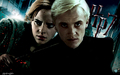 DH Poster: Dramione - harry-potter-combinations wallpaper