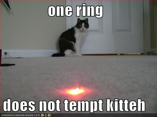 DOES NOT TEMPT THE KITTEH