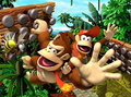 Donkey Kong Country Returns - donkey-kong photo