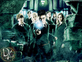 Dumbledore's Army! - dumbledores-army wallpaper