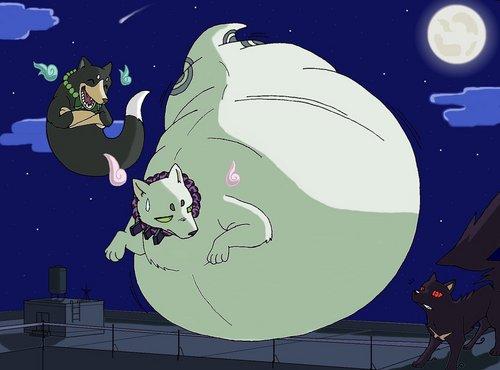 Fat madarao (Kekkaishi)