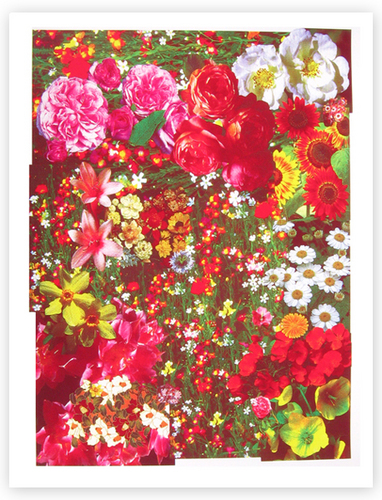 flores in Art