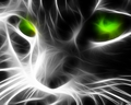 Fractal Cat wallpaper