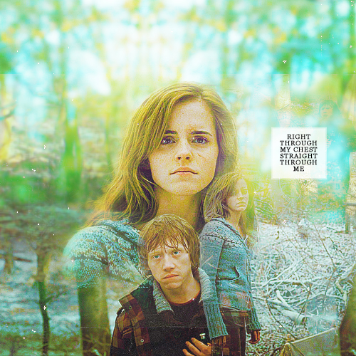 Hermione and Ron 壁纸 possibly with a portrait entitled HP
