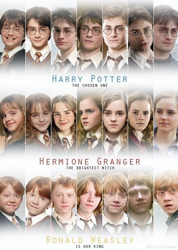 Hermione and Ron 壁纸 titled HP