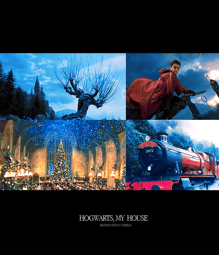 Hogwarts, is my house
