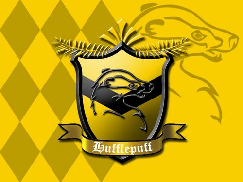 Hufflepuff Pride <3