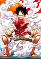 Monkey D. Luffy - one-piece photo