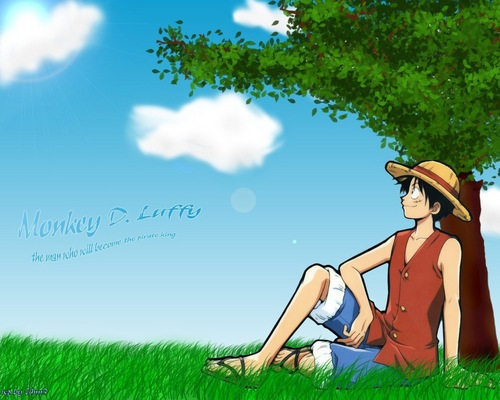 One Piece wallpaper probably with a fedora and a boater titled Monkey D. Luffy