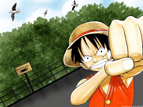 One Piece kertas dinding containing a bonnet called Monkey D. Luffy