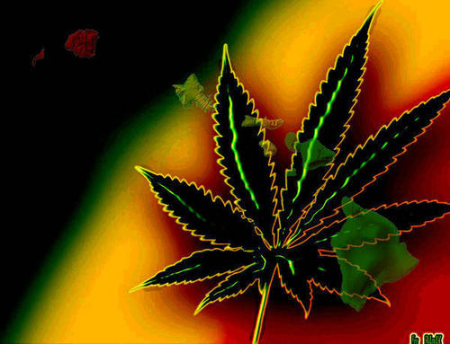 Marijuana wallpaper probably with an agave tequilana, a venus's flytrap, and an agave titled Nice leaf