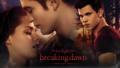 Order Breaking Dawn Tickets - twilight-series photo