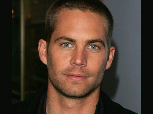 Paul Walker wallpaper containing a portrait entitled Paul Walker Wallpaper
