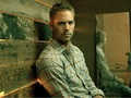 Paul Walker Wallpaper - paul-walker wallpaper