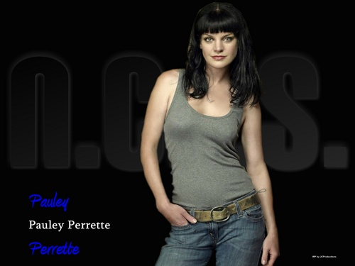 NCIS wallpaper probably containing a concert and a portrait titled Pauley Perrette aka Abby Sciuto