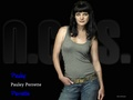 Pauley Perrette - pauley-perrette wallpaper