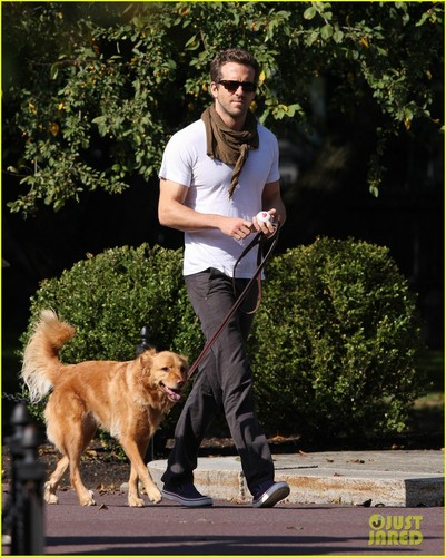 Ryan Reynolds: Boston Garden with Baxter!