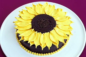 Sunflower Cake - dessert Photo