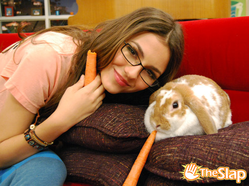 Tori and a rabbit(cute)