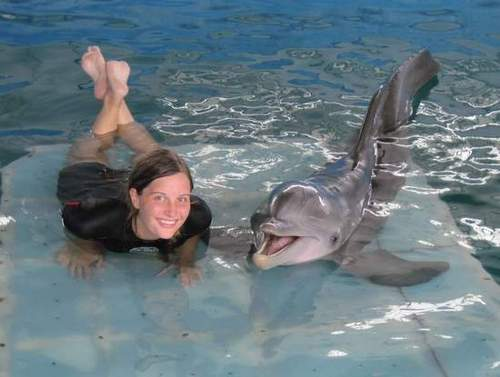 Dolphin Tale Images Winter Alaina Sheehy Wallpaper And