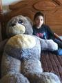 4ft. PM Charlie Bear - stuffed-animals photo