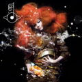 Biophilia Abum Cover - bjork photo