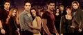 Breaking Dawn promo poster