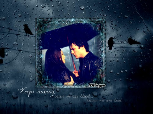 Delena - the-vampire-diaries Wallpaper