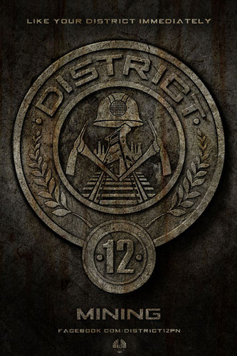 Hunger Games fond d'écran called District Posters