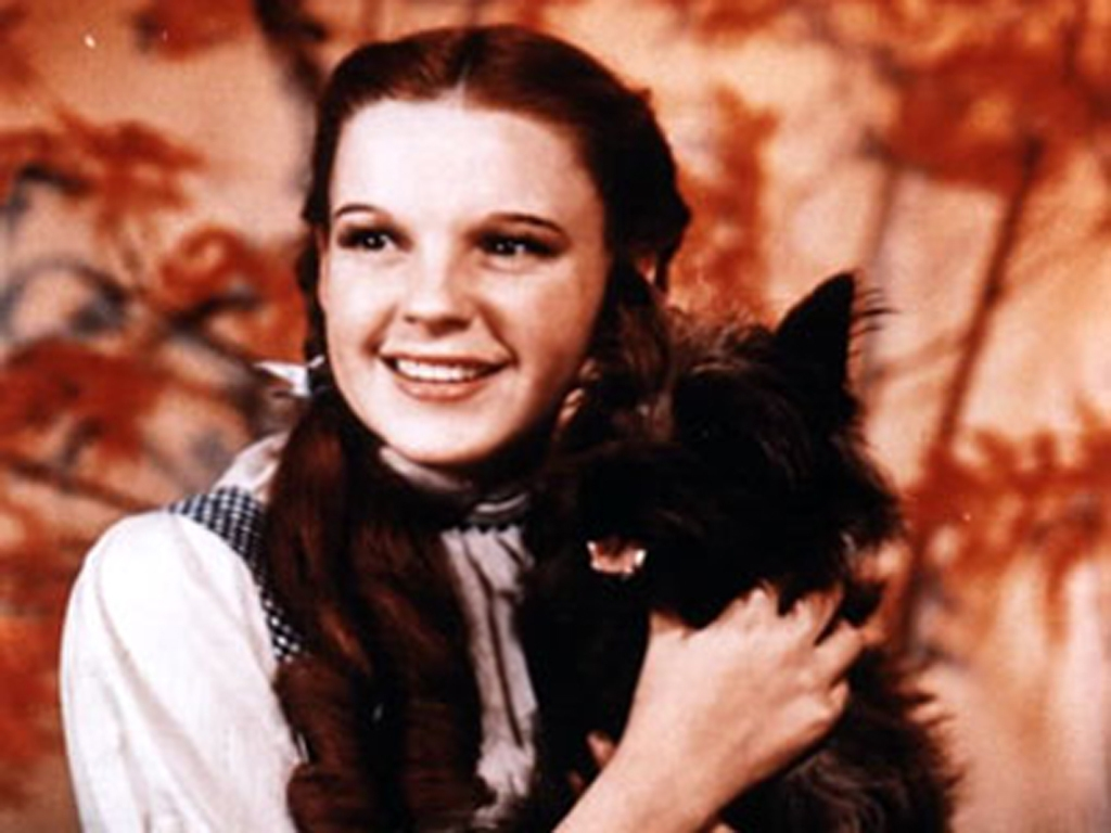 Dorothy from the wizard of oz parody 8