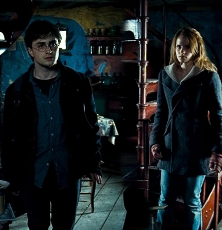 Harry and Hermione wallpaper probably containing a hip boot and a street called Harry and Hermione