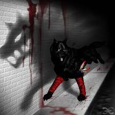 My Darkform! >:D in بھیڑیا