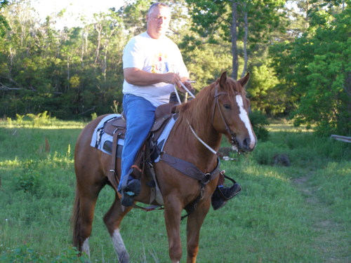 My Horse- Rocky