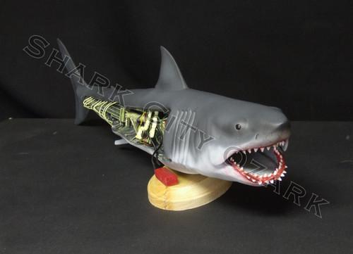 Open-sided BRUCE monster shark!