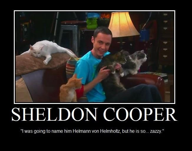 Big Bang Theory Sheldon Cats Quotes