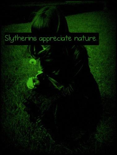 Slytherin Psychology